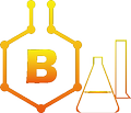 Bai Research Group