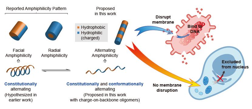 Mono_AuNP-DNA-01